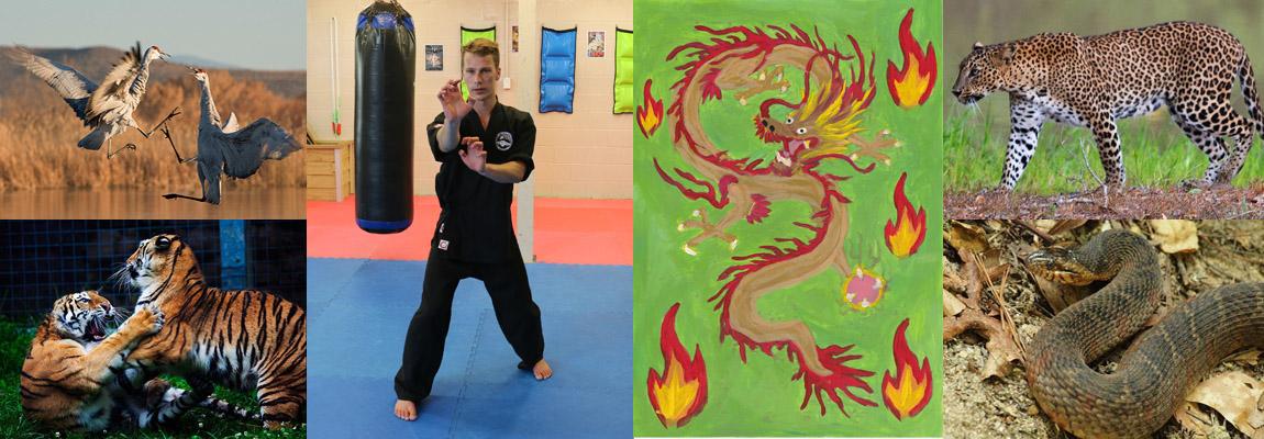 Five Animals Kung Fu