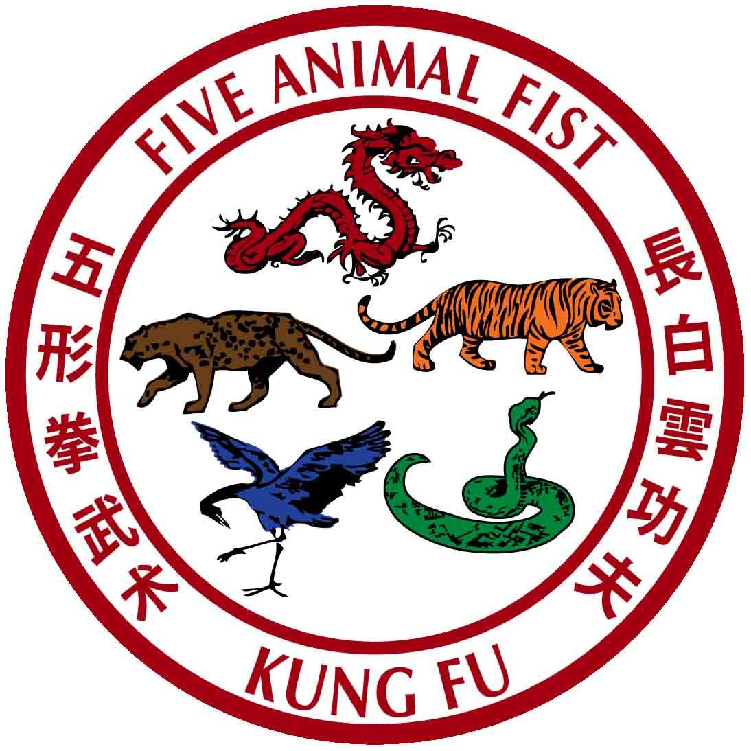 Fist of kung fu